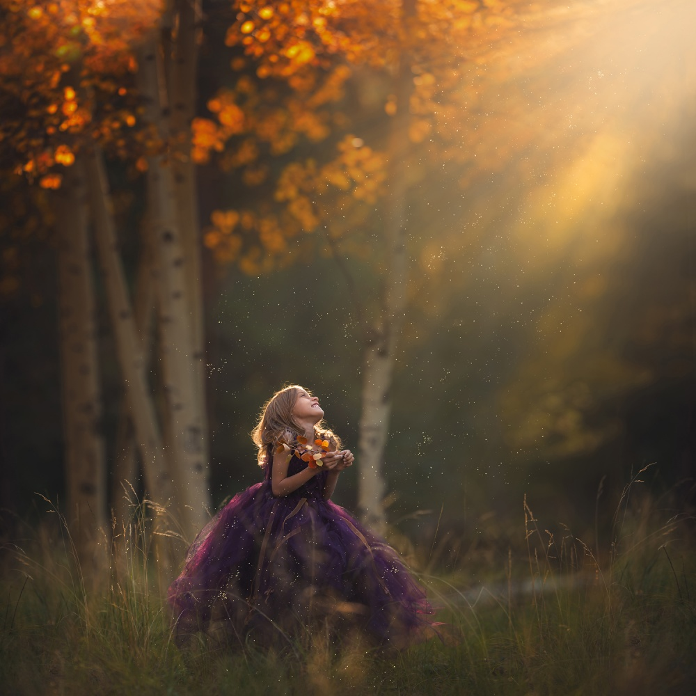 A piece of fine art art photography titled Autumn Magic by Lisa Holloway