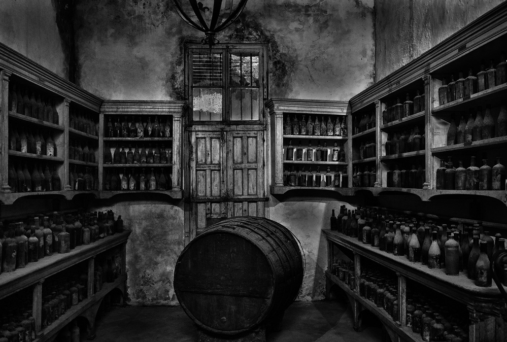 A piece of fine art art photography titled Old Vinery by Hans-Wolfgang Hawerkamp