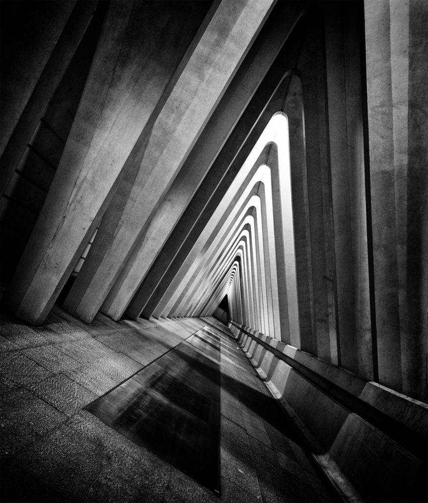 A piece of fine art art photography titled Guillemins by Cor Otterspeer