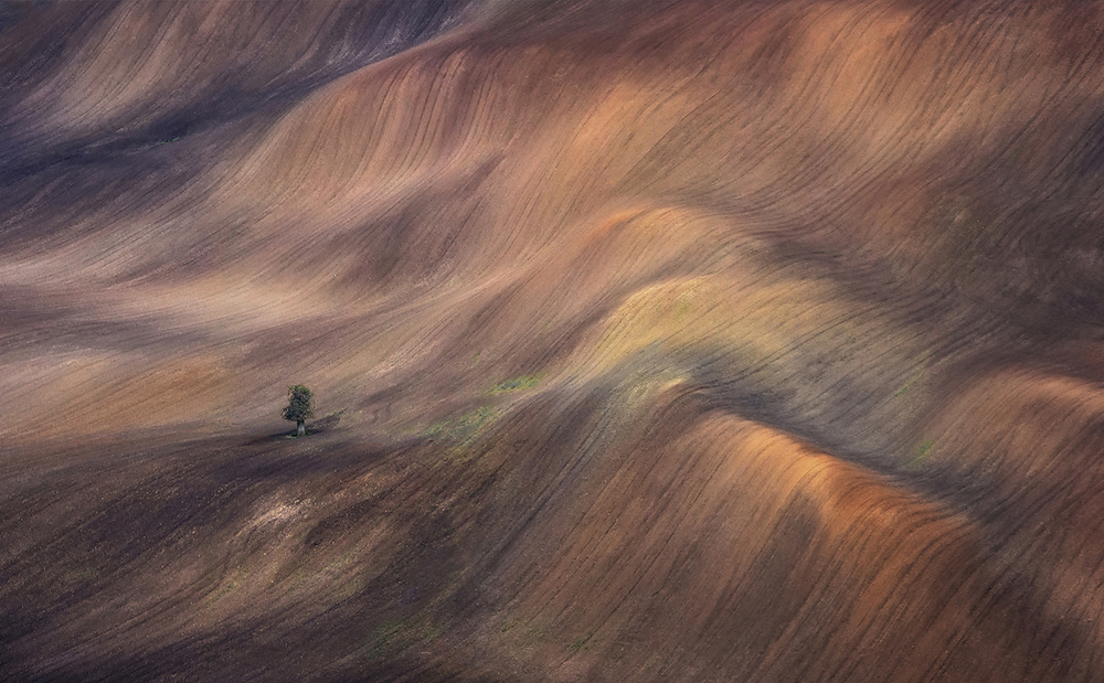 Rustic fields