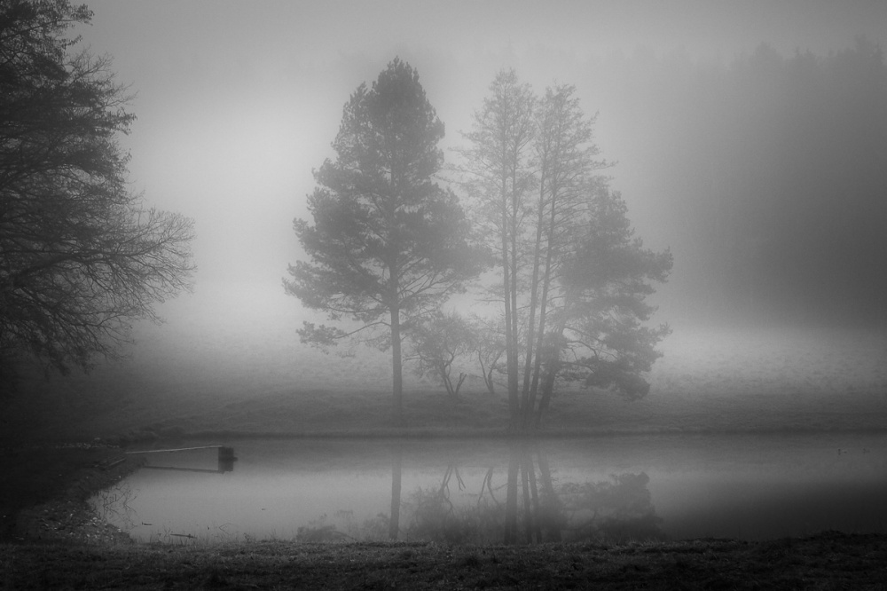 A piece of fine art art photography titled Bathing In Fog by Anne Rose Pretorius
