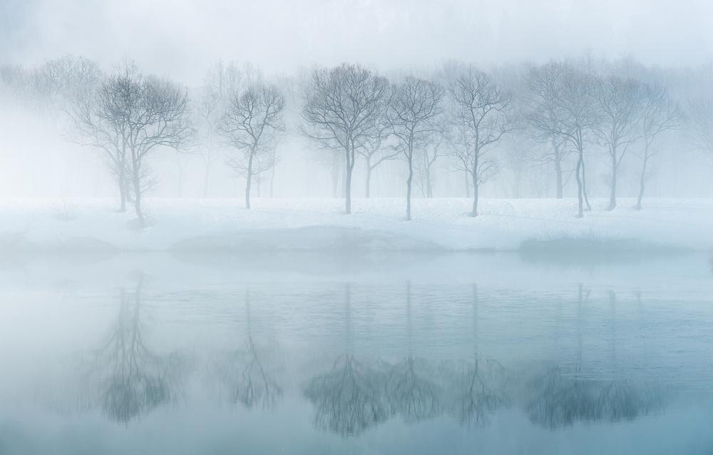 A piece of fine art art photography titled White World by Kazuaki Koseki