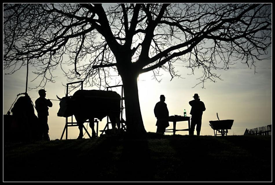 A piece of fine art art photography titled Poveste De Seara (evening Story) by Vlad Dumitrescu