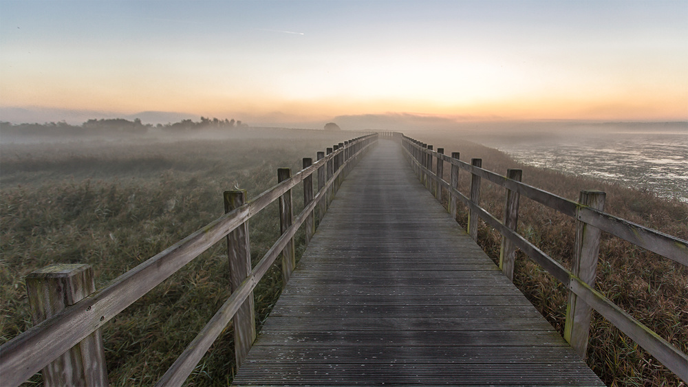 A piece of fine art art photography titled Morning Walk by Leif Løndal