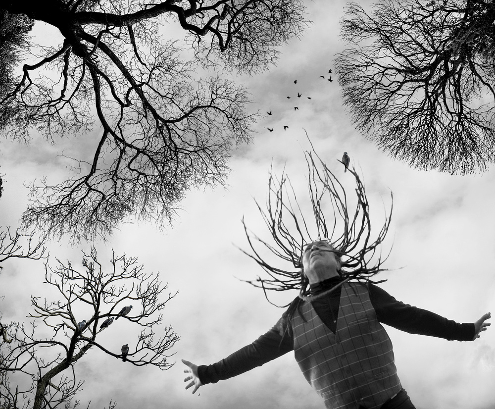 View this piece of fine art photography titled Winter trees... Great soul singer Noel McCalla. by Tatiana Gorilovsky