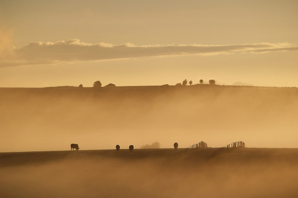 A piece of fine art art photography titled Hills In Aubrac by Arnaud Millot