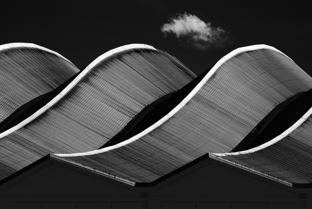 A piece of fine art art photography titled Waves by Jacqueline Hammer