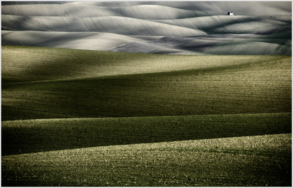 A piece of fine art art photography titled Lucania by Rosario Puglisi