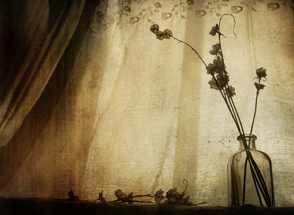 A piece of fine art art photography titled 784 *vintage Window* by anduci