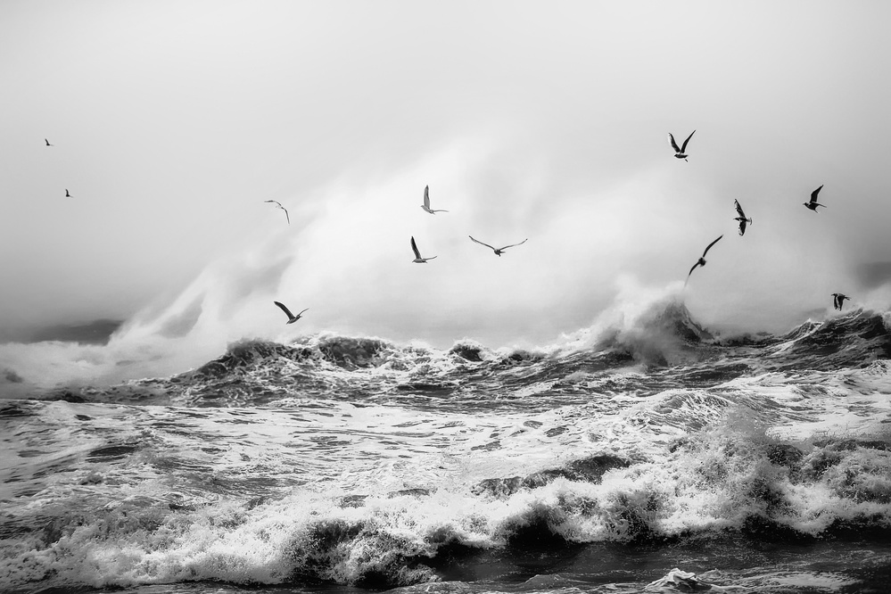A piece of fine art art photography titled Harsh Waves by Alp Cem