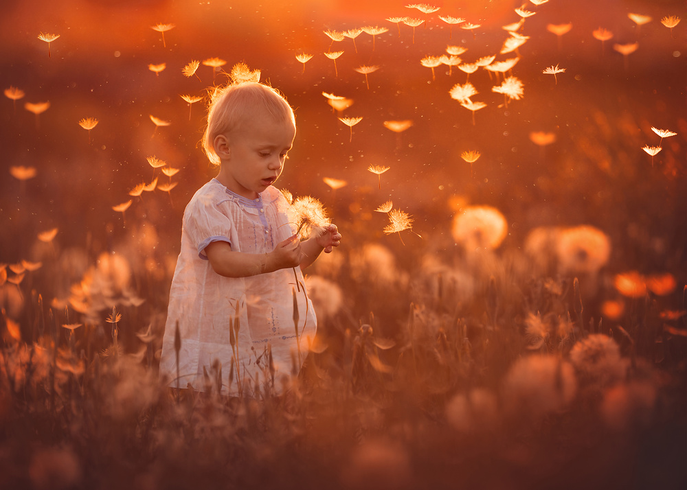 A piece of fine art art photography titled New Discoveries by Lisa Holloway