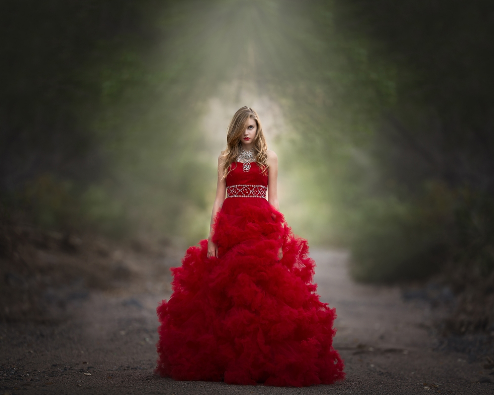 A piece of fine art art photography titled Scarlet Obsession by Lisa Holloway