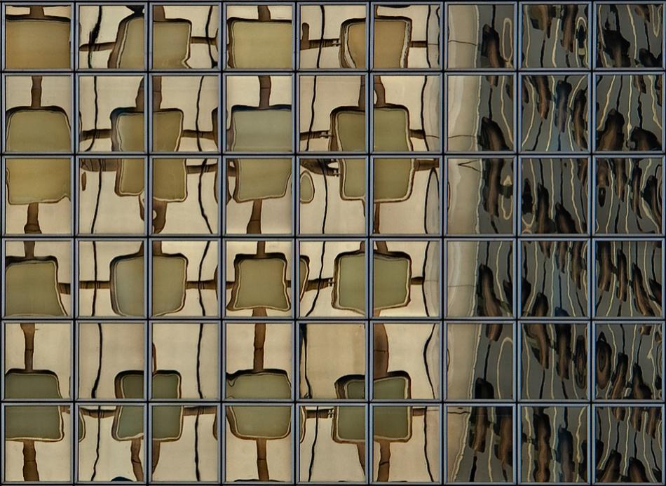 A piece of fine art art photography titled Lattice by Rodrigo Marin