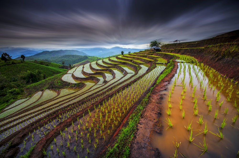 A piece of fine art art photography titled Unseen Rice Field by Tetra