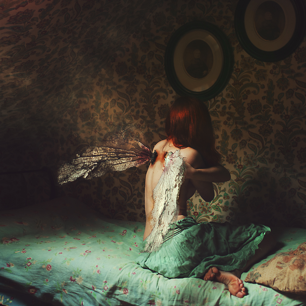 A piece of fine art art photography titled Those Wings Used to Fly by Julie de Waroquier