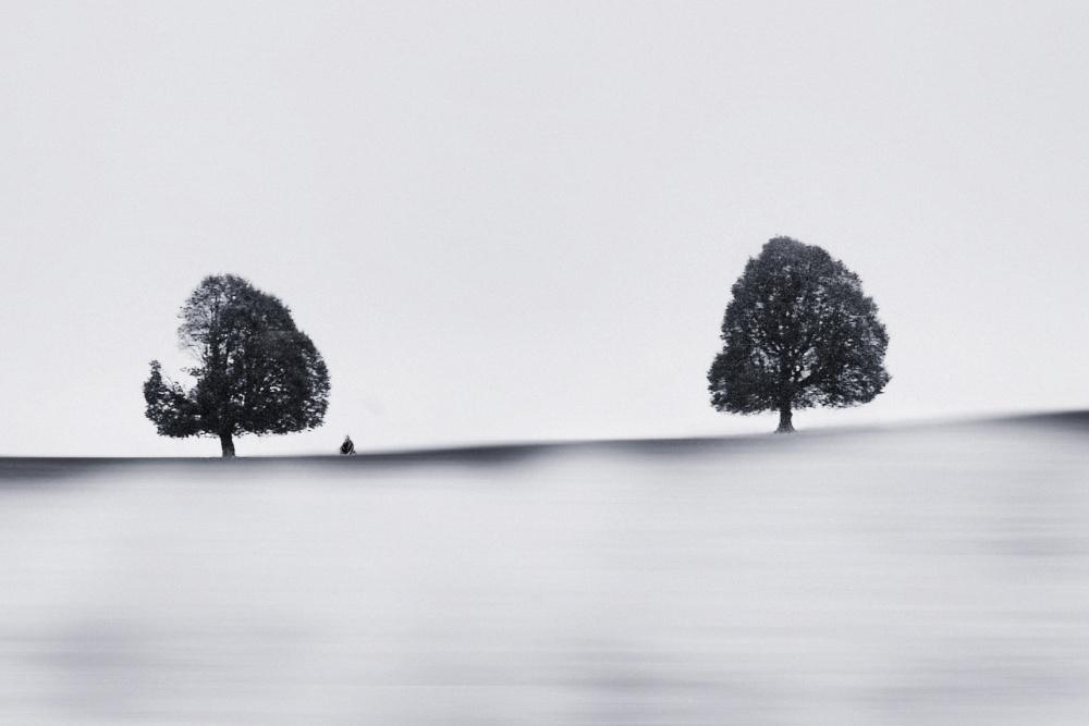 A piece of fine art art photography titled Broken by Marchevca Bogdan