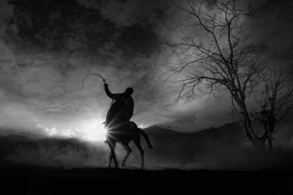 A piece of fine art art photography titled Black Horse II by Bara Kenz