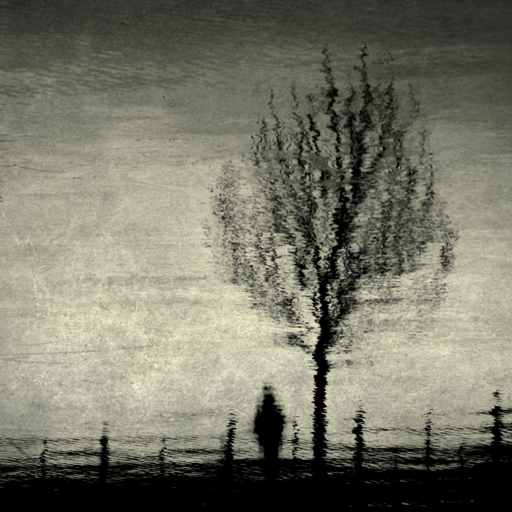 A piece of fine art art photography titled Down by the Riverside by Anja Buehrer