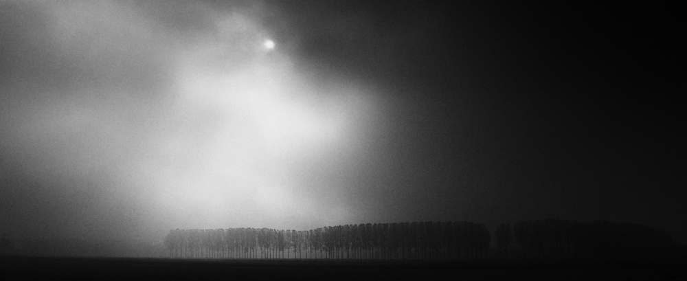 View this piece of fine art photography titled Morning light by Amir Hossein Kamali | امیرحسین کمالی