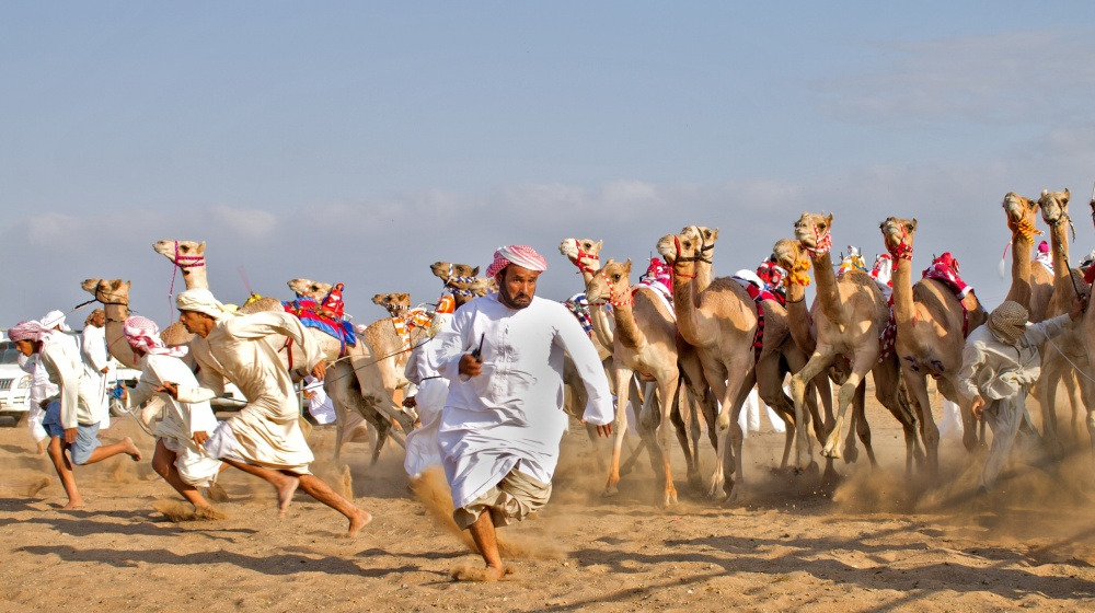 A piece of fine art art photography titled The Great Escape by majid alamri