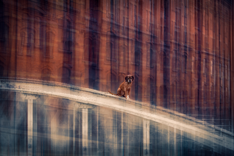A piece of fine art art photography titled No. Way Out (VolII) by Heike Willers