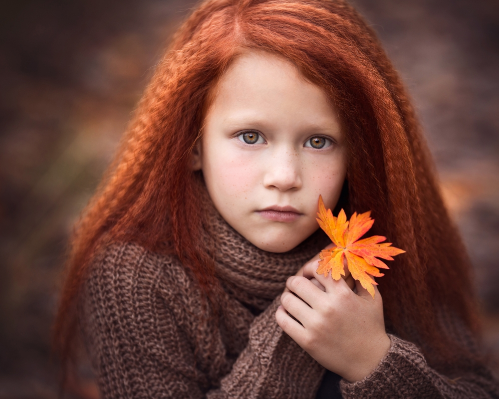A piece of fine art art photography titled Autumn Fire by Lisa Holloway