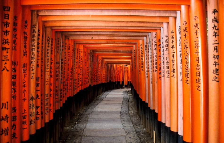 A piece of fine art art photography titled Orange Torii 2 by Eelco Dekker