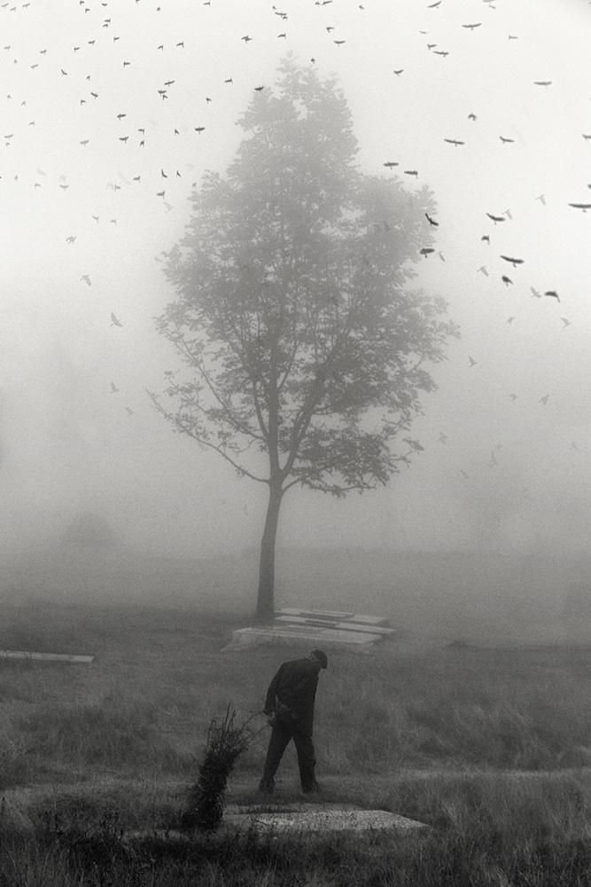 A piece of fine art art photography titled Cemetery by Amir Hossein Kamali | امیرحسین کمالی