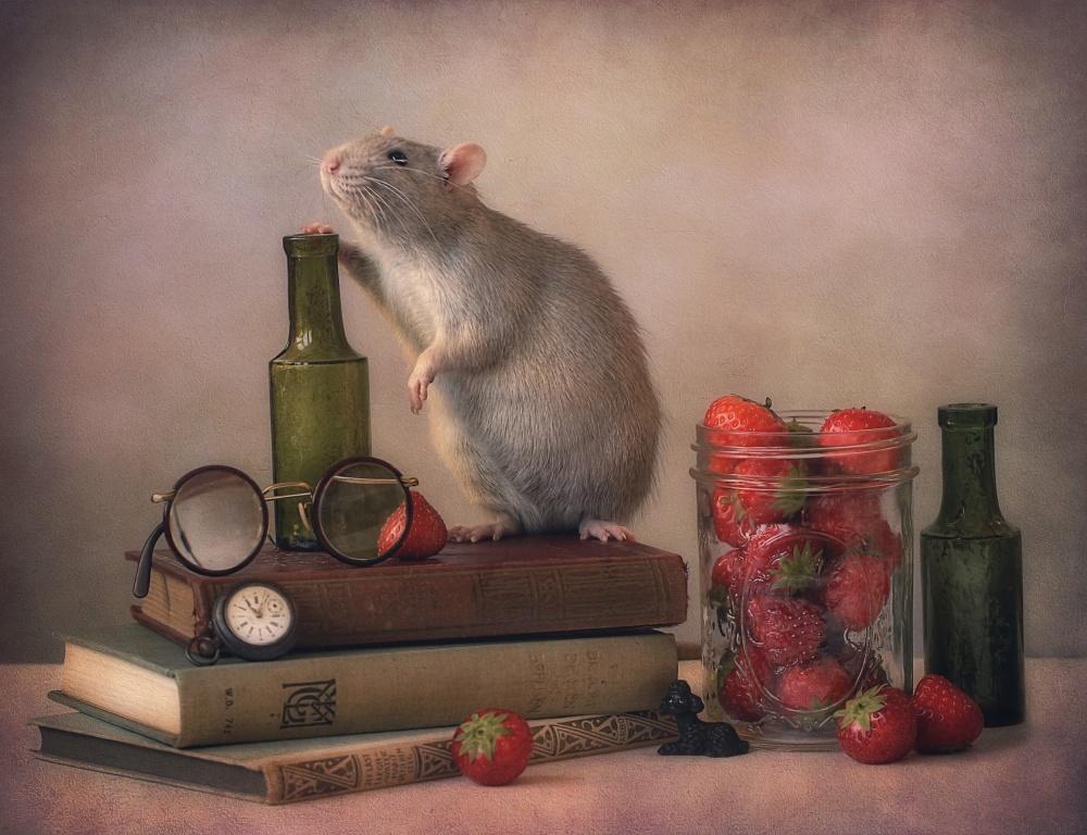 A piece of fine art art photography titled Jimmy  :) by Ellen van Deelen