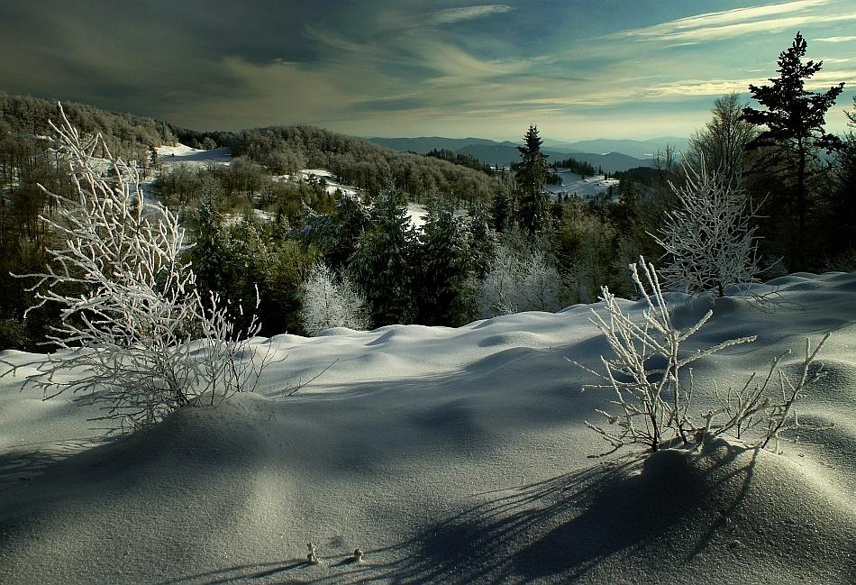 A piece of fine art art photography titled The Winter Chiaroscuro by Janusz Wanczyk
