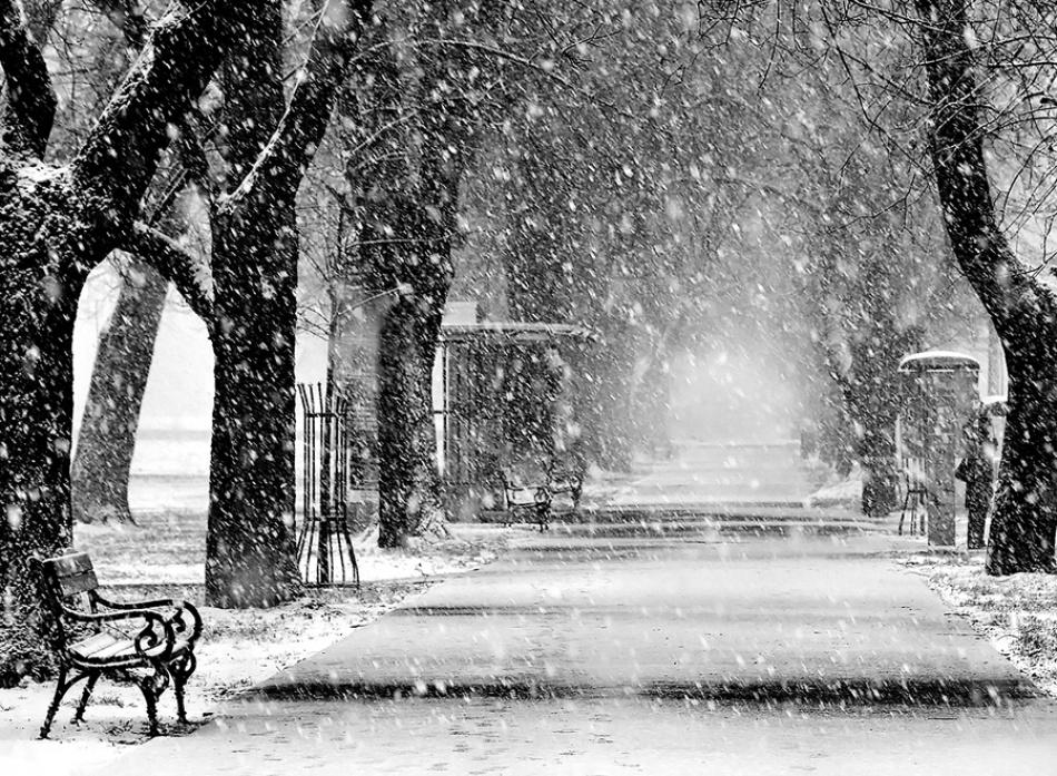 A piece of fine art art photography titled Silence by Jasmina Gorjanski