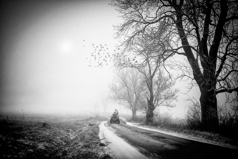 A piece of fine art art photography titled Untitled by stanislav hricko