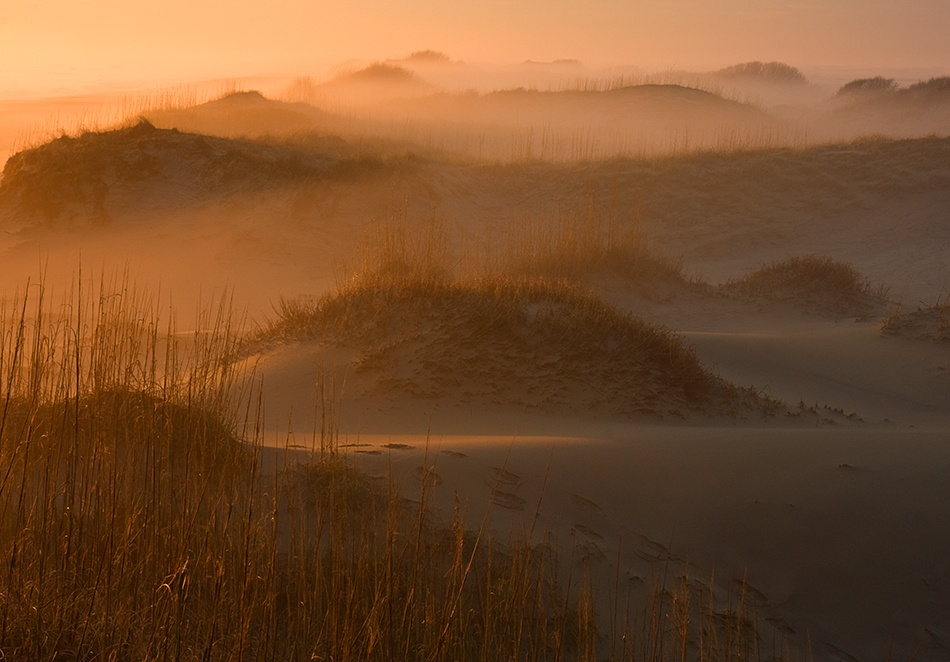 A piece of fine art art photography titled Footprints, Fog, and Dunes by Doug Roane