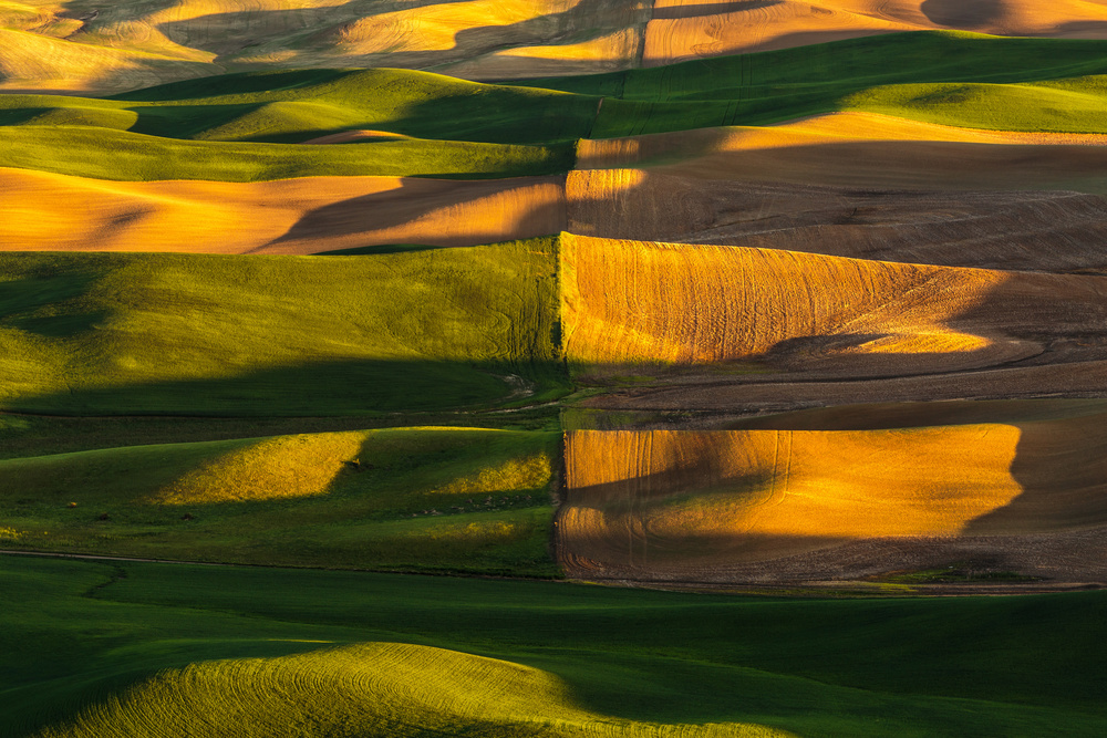 A piece of fine art art photography titled A Line Runs Through It by Francois Roughol