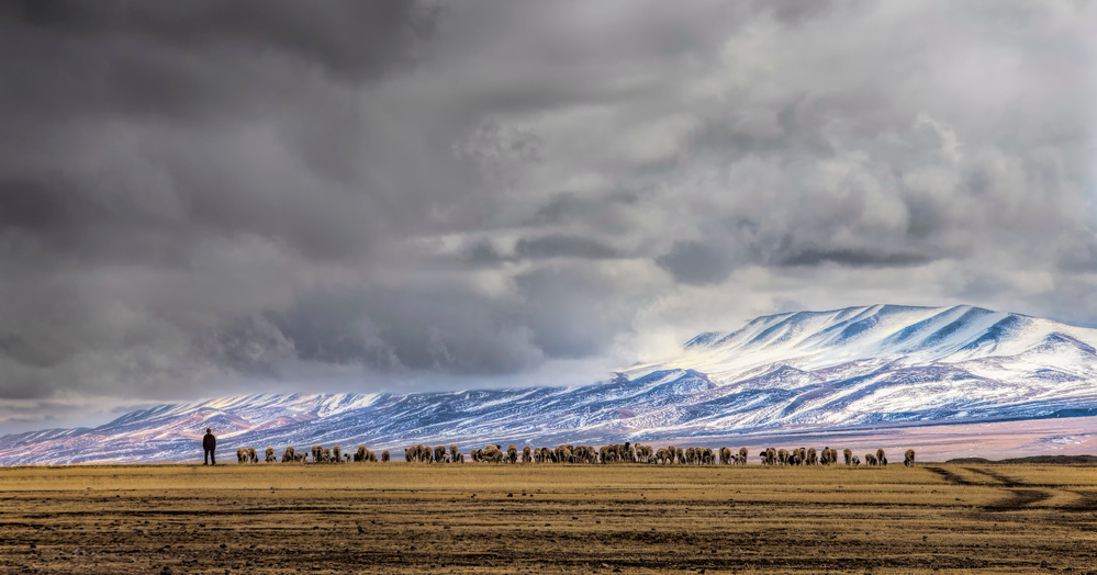 A piece of fine art art photography titled At the Foot of the Tianshan Mountains by Jun Zuo