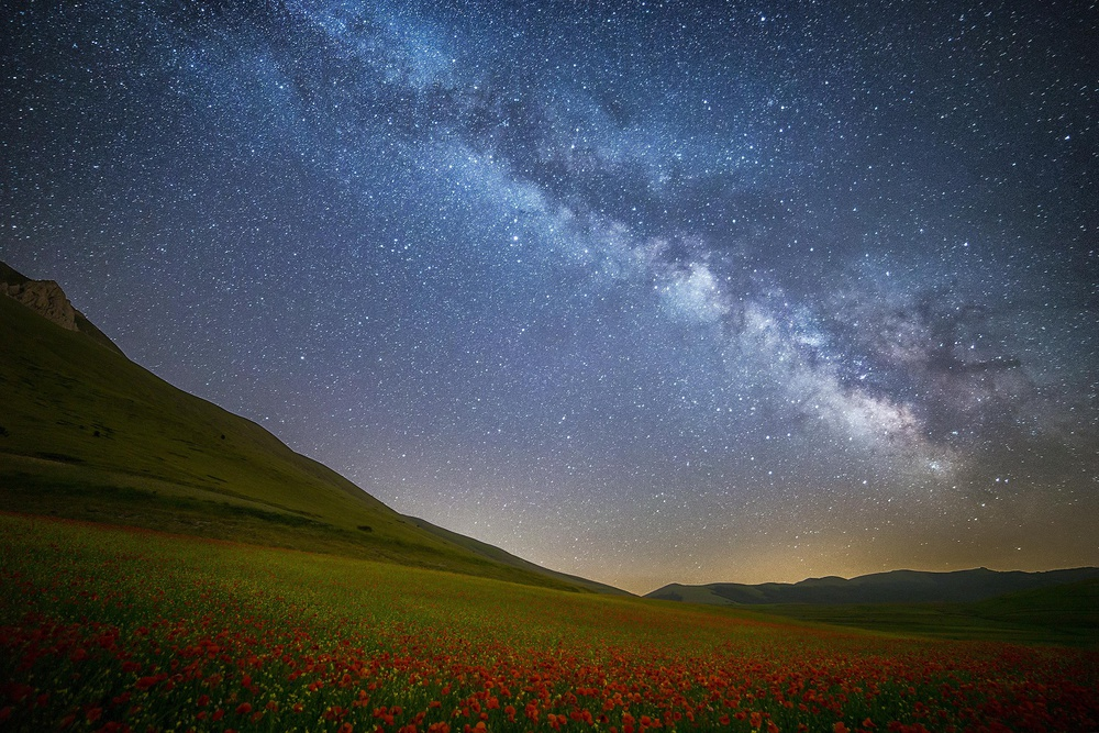 Poppies and Milky Way