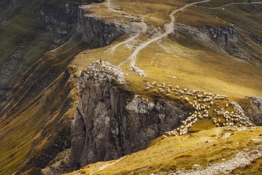 A piece of fine art art photography titled Alpine Pastures by mihai ian nedelcu