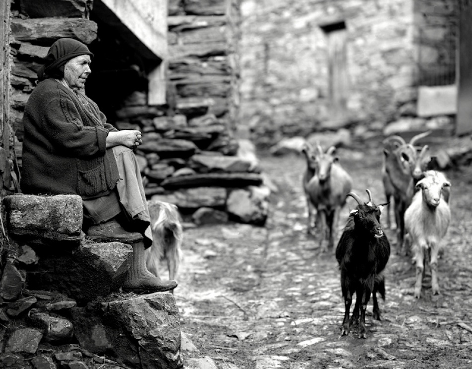 A piece of fine art art photography titled Rural Moments by Rui Pires