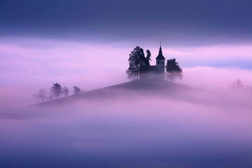 View this piece of fine art photography titled In the morning fog... by Hamid Jamshidian