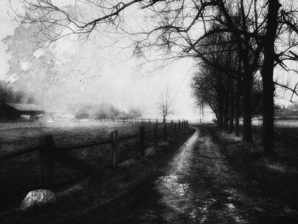 A piece of fine art art photography titled A Rural Scene by Adam Weh