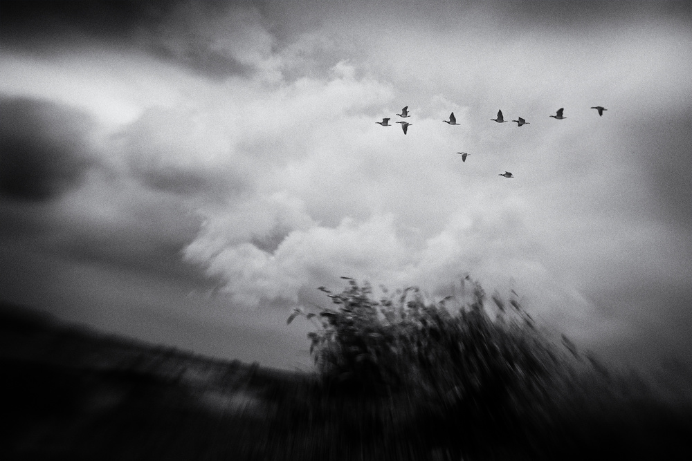 A piece of fine art art photography titled Storm Is Gathering by Jacob Tuinenga