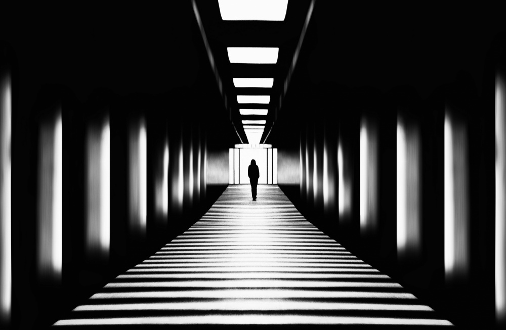 A piece of fine art art photography titled Transition by Samanta Krivec