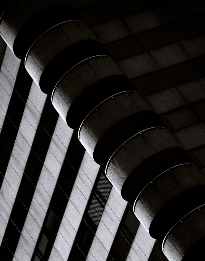 A piece of fine art art photography titled Hive Life by Martin Gremm