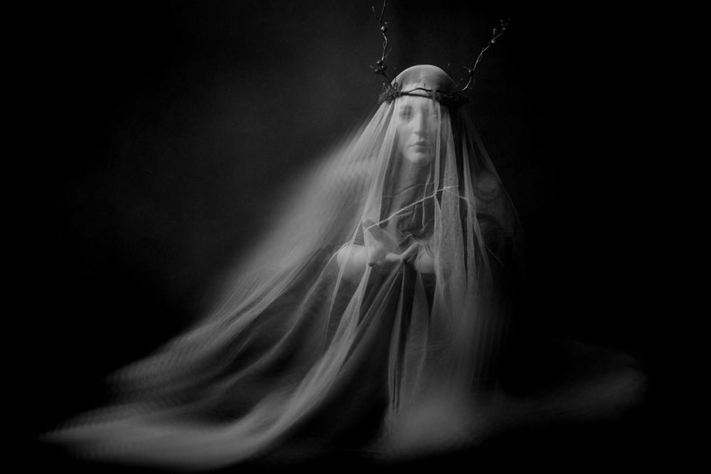 A piece of fine art art photography titled Longing by Olga Mest