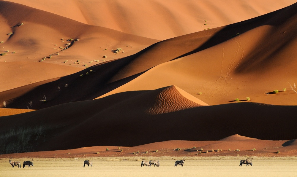 A piece of fine art art photography titled Namib Dunes by Muriel Vekemans