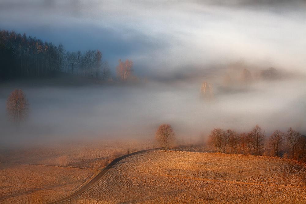A piece of fine art art photography titled Silent Sounds by Izabela Laszewska-Mitrega/Darek Mitręga