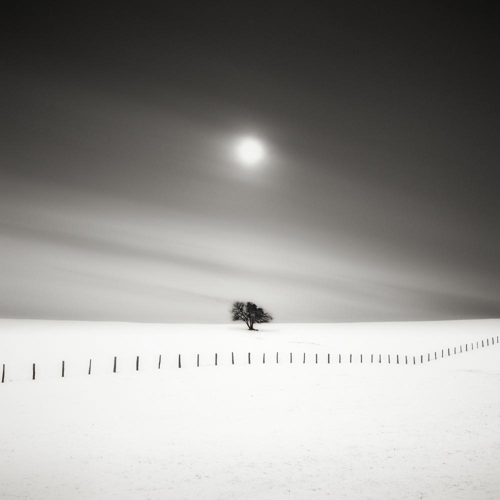 A piece of fine art art photography titled Duetting by Alain Baumgarten