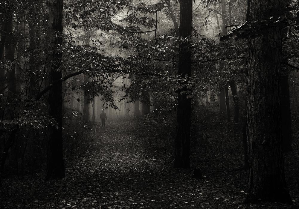 Autumn hill walk