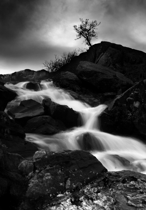 A piece of fine art art photography titled The Lonely Tree by Stefan Bingham