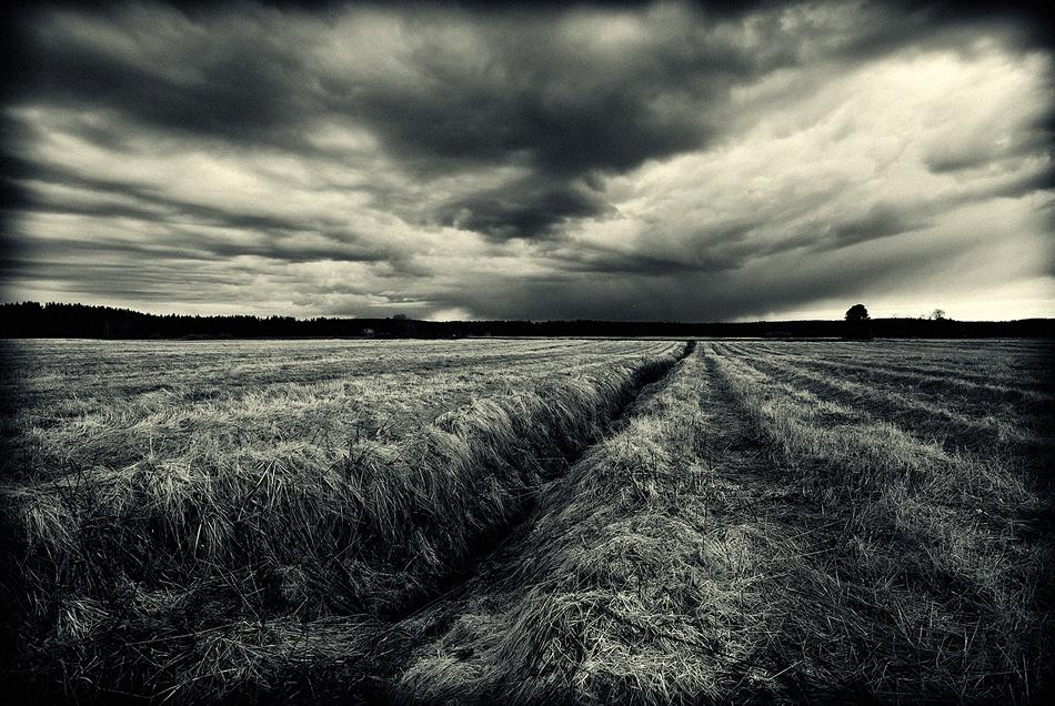 A piece of fine art art photography titled Dark Land by Joni Niemelä